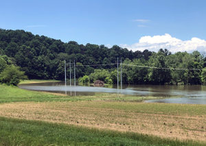 Flood fields next to the French Broad River in Mills River, NC (Photo courtesy of S. Villani, NCSU)