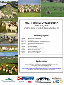 Cover photo for Small Ruminant Workshop