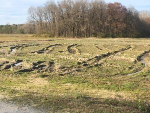 Ruts in a field caused by a grain combine due to a wet 2018 harvest season.