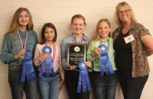 Cover photo for 2019 NC State 4-H Horse Judging Contest Winners