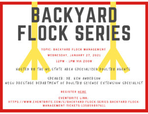 Cover photo for Backyard Flock Series - Backyard Flock Management
