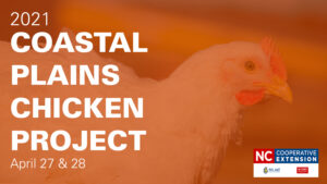 Orange over a broiler chicken with white text 2021 Coastal Plains Chicken Project April 27 & 28 and the N.C. Cooperative Extension logo