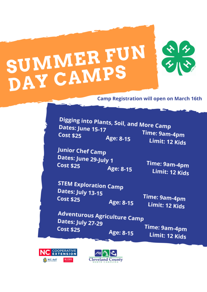 Summer fun camps flyer
